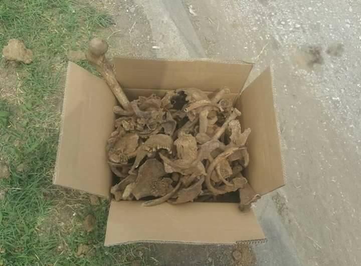 """ألعثور على مقبرة جماعية في العاصمة السنجقية """" نوفي بازار """""""