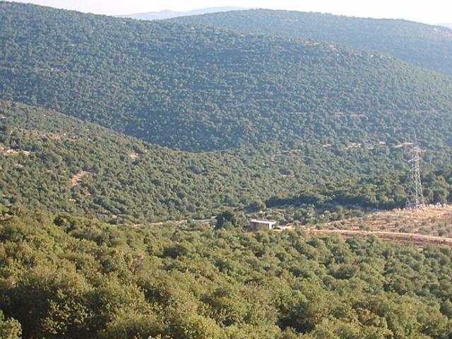 عودة الانارة للأحياء الجنوبية لبلدتي الطرة والشجرة