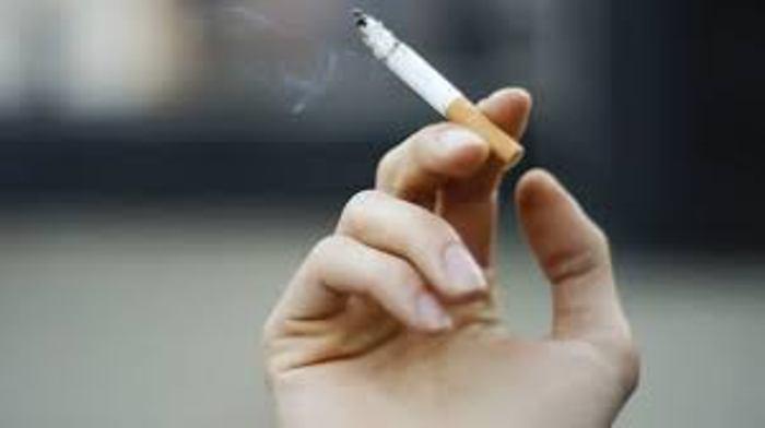 تقنية تسخين التبغ بدلاً من حرقه: الموجة القادمة من ثورة الحد من ضرر التدخين