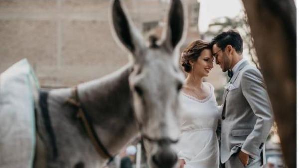صور تذكارية لعريس مصري وزوجته مع الحمار  .. صور