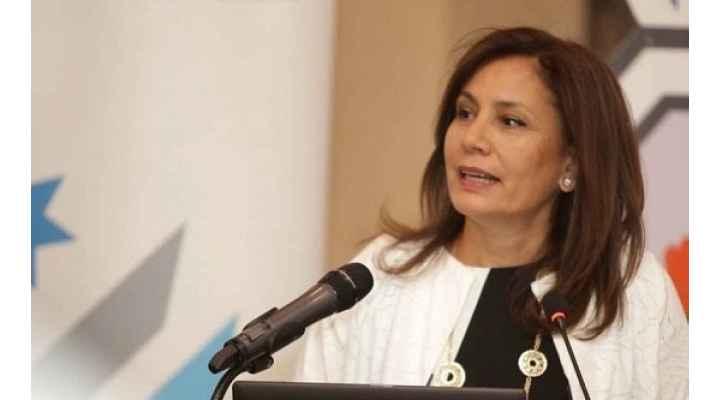 زواتي: نسعى لزيادة كميات الغاز المستورد من مصر