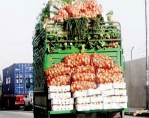 الزراعة: 1500 طن خضار يوميا الى دول الخليج