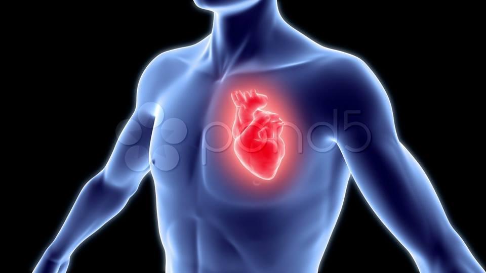 نقص الفوسفات في الدم يمرض القلب