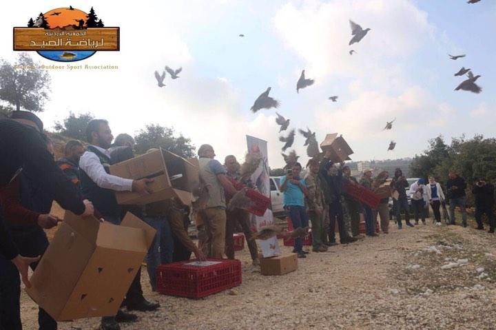 الجمعيه الاردنية لرياضة الصيد تطلق الفوجين الخامس والسادس من طيور الشنار