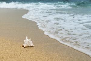السجن ست سنوات لسارقي رمال شاطئ في إيطاليا